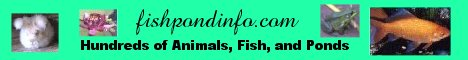 fishpondinfo.com