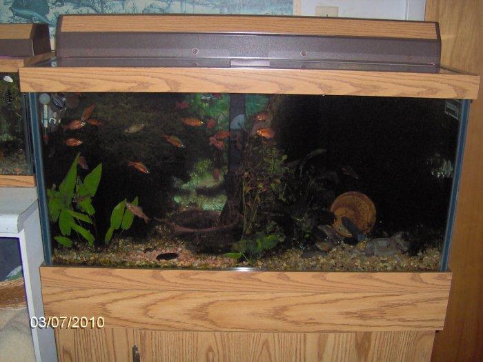 20 gallon fish tank 50 top fin 50 gallon hooded aquarium for 50 gallon fish tank starter kit