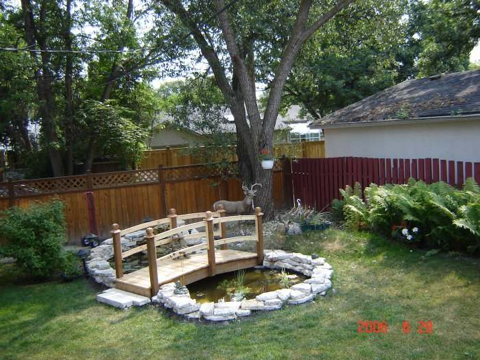 Dog ponds on pinterest ponds small ponds and backyard for Small yard ponds